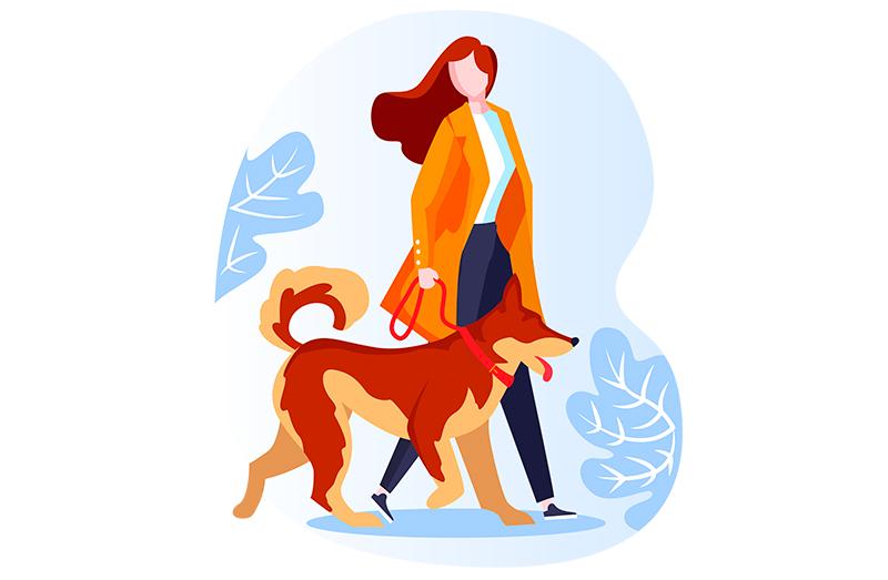 Adiestramiento canino para problemas de conducta en Murcia