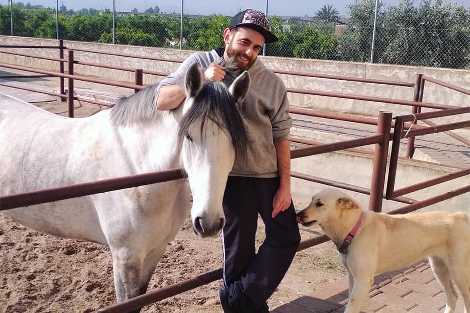 Cuidado de caballos en Murcia