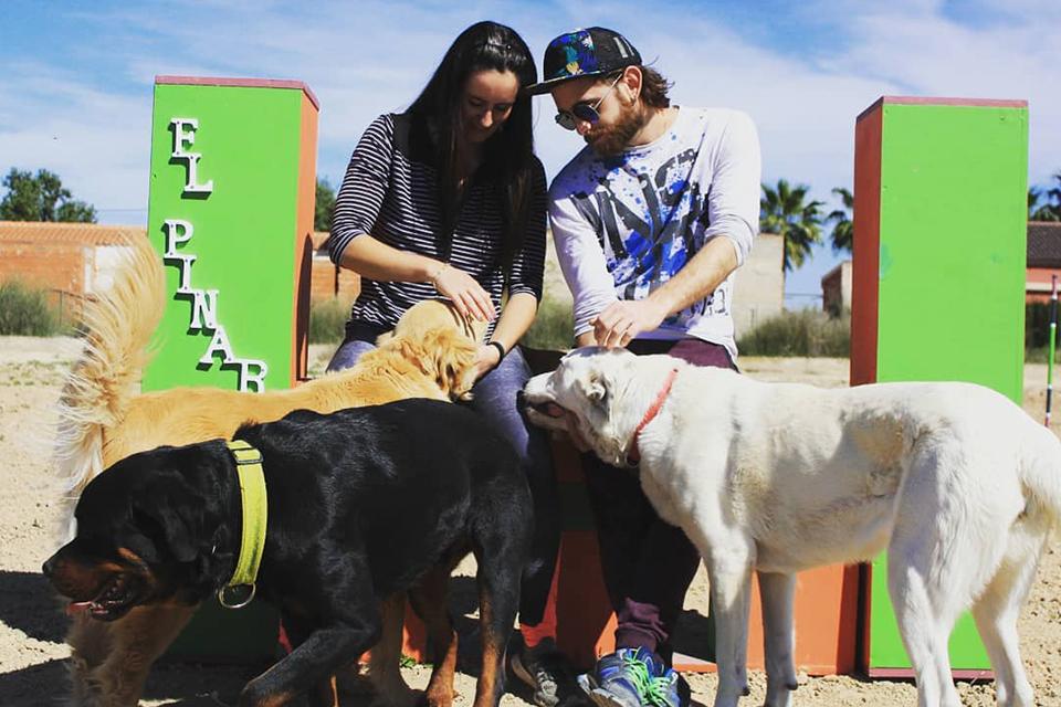 Guardería Canina El Pinar sin jaulas en Murcia