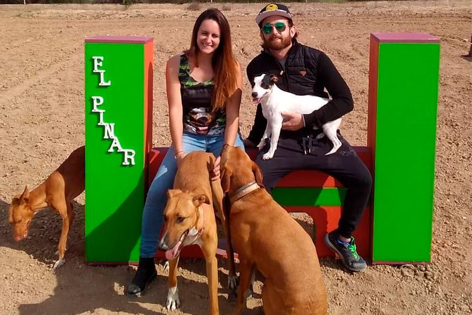 Huéspedes peludos en Guardería Canina El Pinar en Murcia