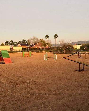 Zona de entrenamiento en guardería canina en Murcia